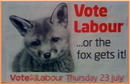 foxhunting.JPG